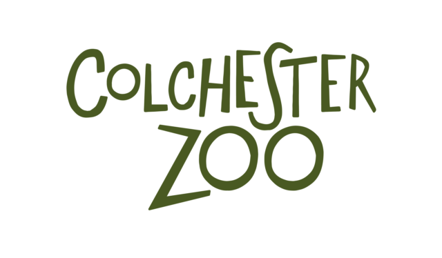 Colchester Zoo Adult